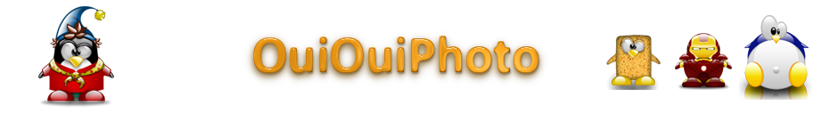 Bandeau du site OuiOuiPhoto